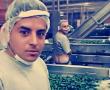 Inspecciona Salud a La Costeña, por  foto de empleados orinando sobre productos